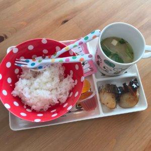 Ohaco 白米とふりかけと焼き魚と味噌汁のキッズミール