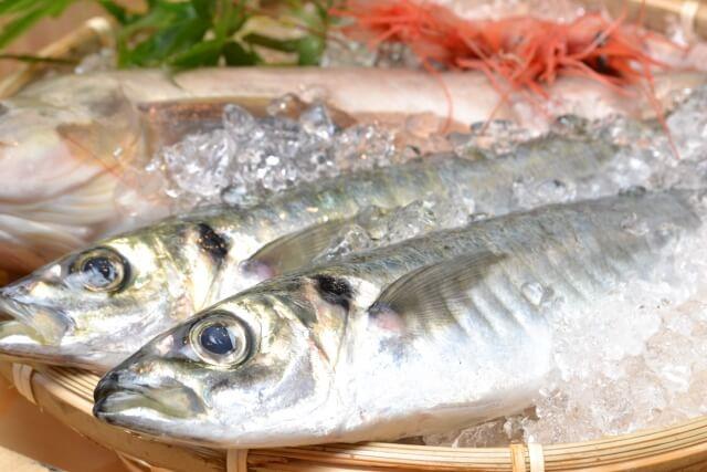 岐阜 高山 高山市 魚 和食 割烹 子連れ 夕飯 ディナー 新鮮な魚